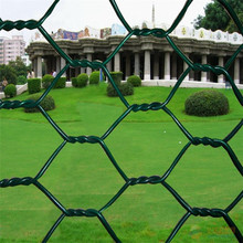 1/2 '' Galvanized Hex Chicken Wire Netting