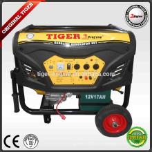 7000W бензиновые генераторы серии TMG8800DXE