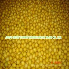 Высокое качество свежих Лимонов