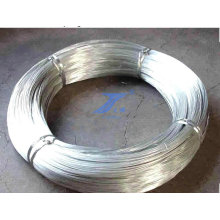 China Factory Good Quality Hot-Dipped Galvanized Wire (TS-E69)