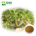 White Willow Bark Extract salicin 2.5%-98%