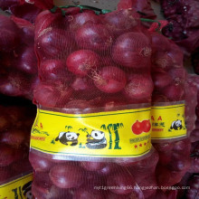 Fresh Onions Importers in Malaysia