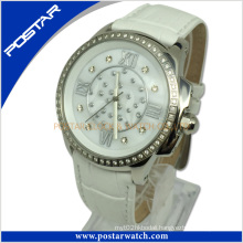 Pad-2236L Fashionable Mechanical Watch with Waterproof Quality