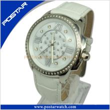 Relógio Mecânico Elegante Pad-2236L com Qualidade Impermeável