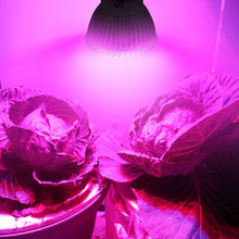 28W Vollspektrum E27 LED Grow Glühbirne