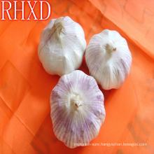 wholesale china cheap garlic
