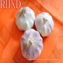 venda por atacado china cheap garlic