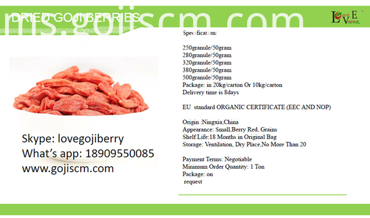 High Quality GOJI BERRY specification