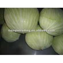 Fresh chinese flat cabbage