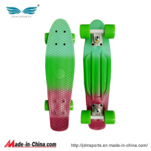 PP Material Multi Color Penny Board