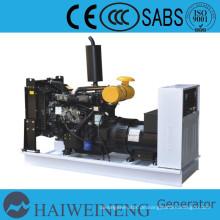 Kleine Wasser-gekühlten Diesel-Generator macht durch 25kva Ricardo Dieselmotor (China Generator)