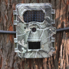 Night Vision Hunting Camera with Motion Detection