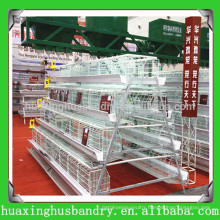 new design hot selling chicken poultry equipment