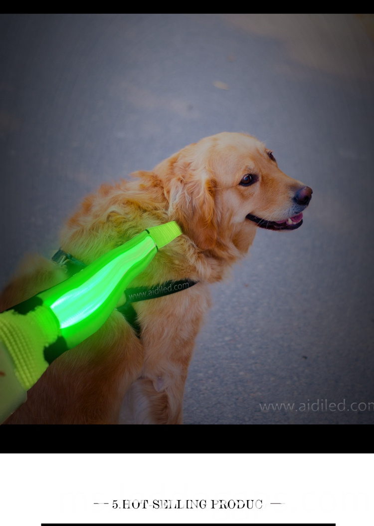 Led Lighted Pet Leash