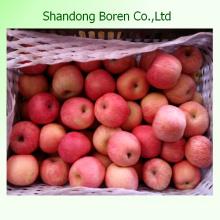 Preço do Mercado de Frutas Preço Médio da Apple Apple Fruit