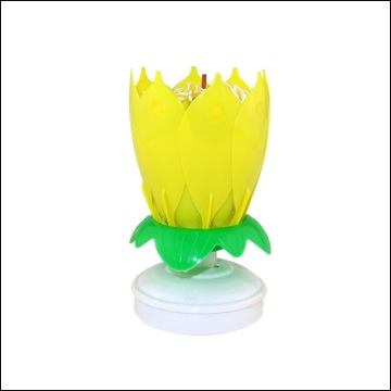 Flower Birthday Party Music Candle