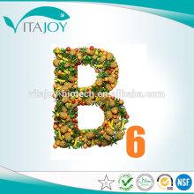 Vitamina B6 Pyridoxine Hydrochloride Aditivos para piensos BP USP en stock con entrega rápida