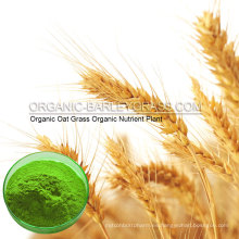 USDA Organic Oat Grass Powder
