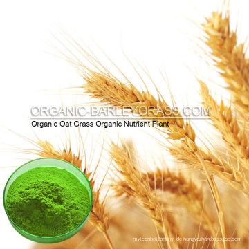 USDA Bio-Hafergraspulver