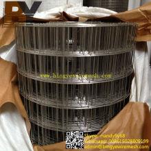 Malha de arame soldada em aço inoxidável de reforço 6X6