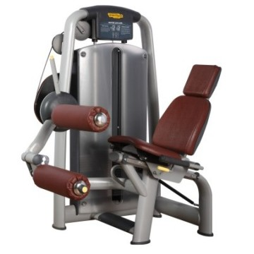 Professional Star Hotel Gym Ćwiczenia Machine Leg Curl