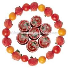 Tomato Primary Ingredient Tomato Paste