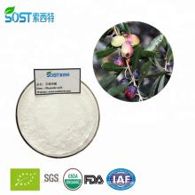 Hot Selling High Quality Organic Oleanolic Acid