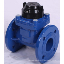 Removable Horizontal Woltman Water Meter (sc10003)