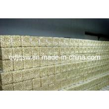 Vacuum Bag Packing USA Quality Peeled Garlic (450-550 PCS/kg)