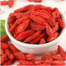 Ningxia Goji Berry (convencional) Chinese Wolfberry