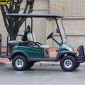 CE Одобрил Заднее Сиденье Llifted Электрический Гольф-Автомобилей
