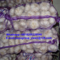New Crop Raw Normal/Pure White Garlic 4.5cm