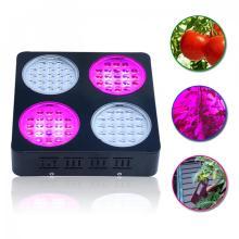 Drop Shipping LED Grow Light