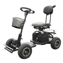 Electric Trekker Golf Cart 413G-3