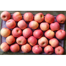 Crisp Fresh Delicioso Red Star Apple