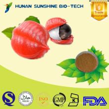 100% естественное семя гуараны П. е. в качестве фармацевтических ингредиентов