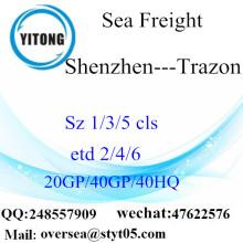 深セン港の海の貨物輸送Trazonへ