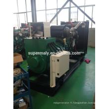 Démarrage automatique 250kilowatt générateur diesel à vendre avec prix d'usine par Ricadra / Yuchai / weichai / wudong engine