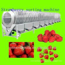 Strawberry grading machine