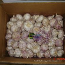 Alho branco venda quente em grande quantidade