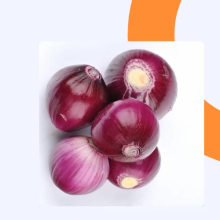 Chinese fresh red onion price per ton export