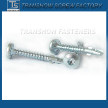 High Quality Torx Pan Head Self Drilling Screw with Wing