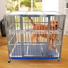 Nouvelle arrivée forte cage de chien en acier inoxydable