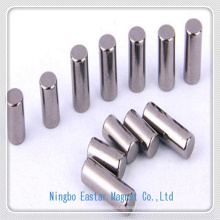 High Speed Motor Use Neodymium Magnet with Nickel Plating