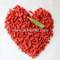 Китай Лучшая оптовая торговля goji ягода экспортер / импорт goji