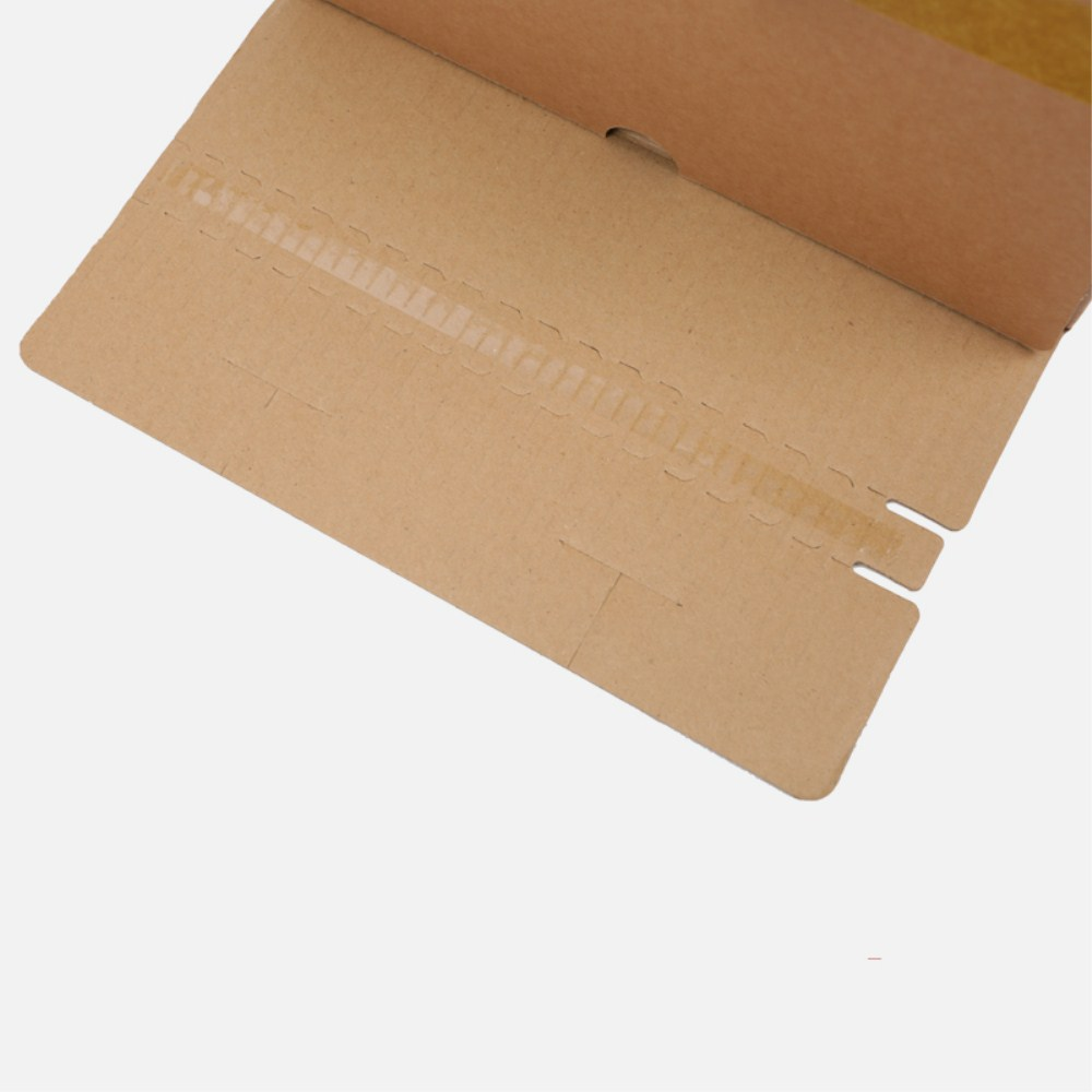 kraft Zipper Carton Boxes