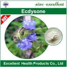 Extracto de cianotis arachnoidea Ecdysone