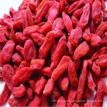 China getrocknete Masse Goji Berry Mispel Früchte zum Verkauf