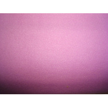 Anti-Static Double Anti-Pilling Double Polar Fleece