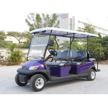 Ce chariot de golf électrique 6 places approuvé pour les touristes